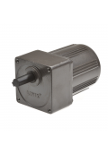 Gear motor YN80 24RPM