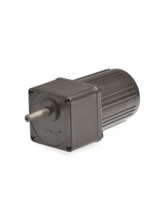 Gear motor YN60 15RPM