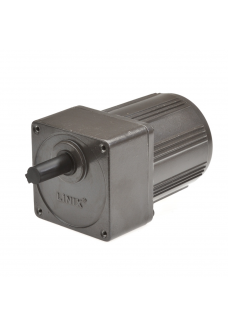 Gear motor YN80 8RPM